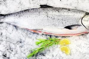 Cá Hồi NaUy (Phi Lê)